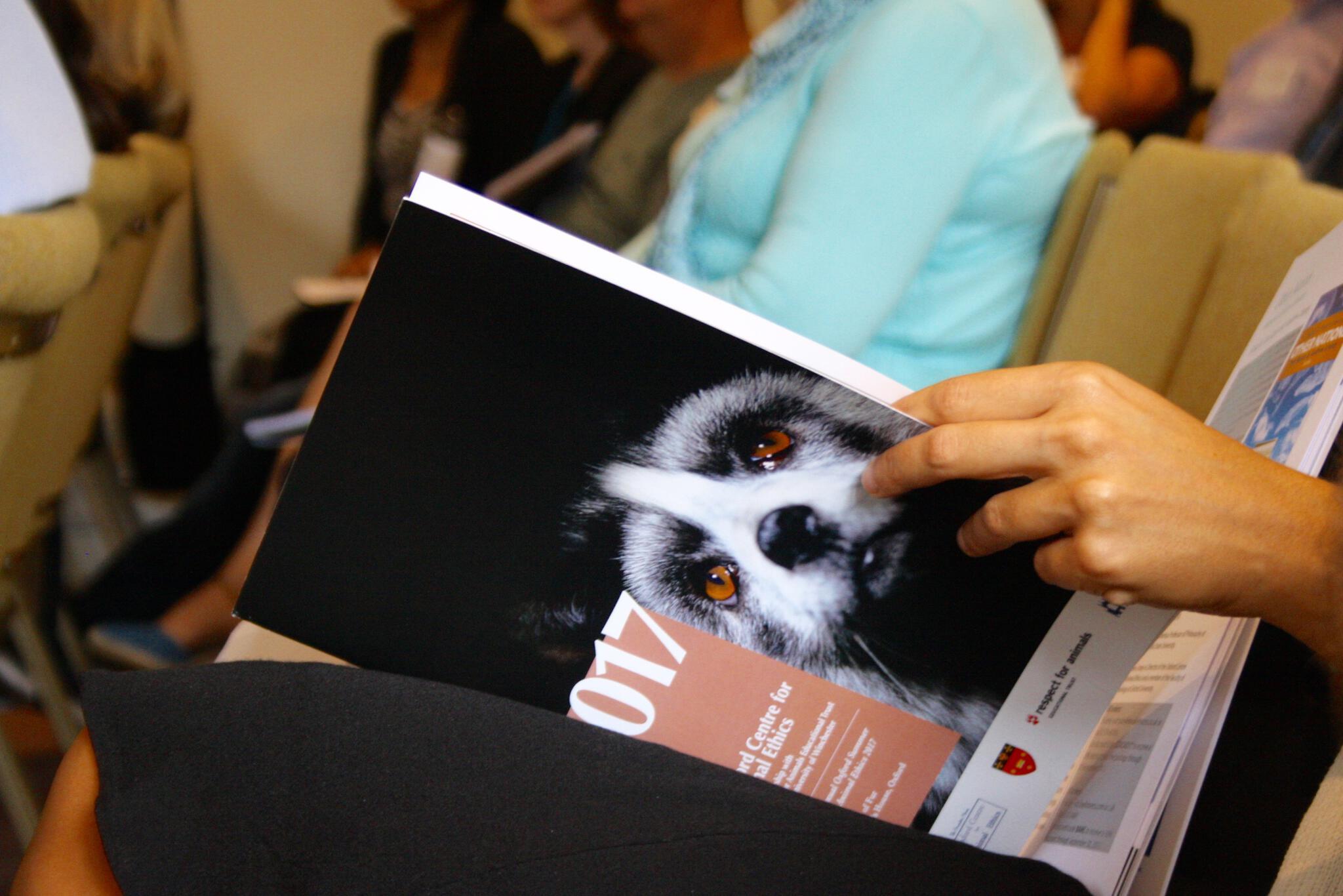Summer School 2017: The Ethics of Fur
